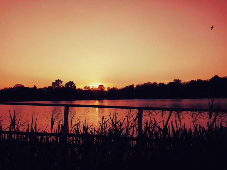 Great Fishing Spot to fish at night