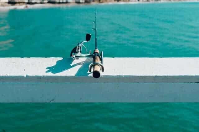 Decide on the Type of Fishing Rod Right for You