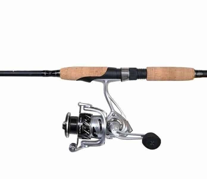 Cadence Fishing CC6 Spinning