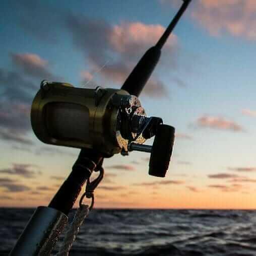 Baitcast reel and rod