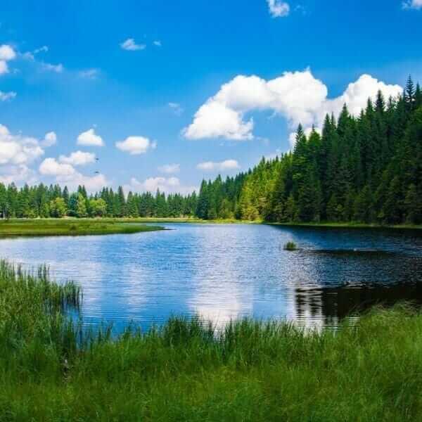 Lake fishing spot