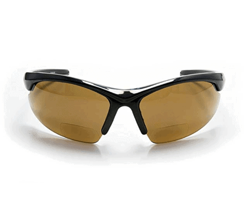 Polarized Bifocal Reading Sunglasses