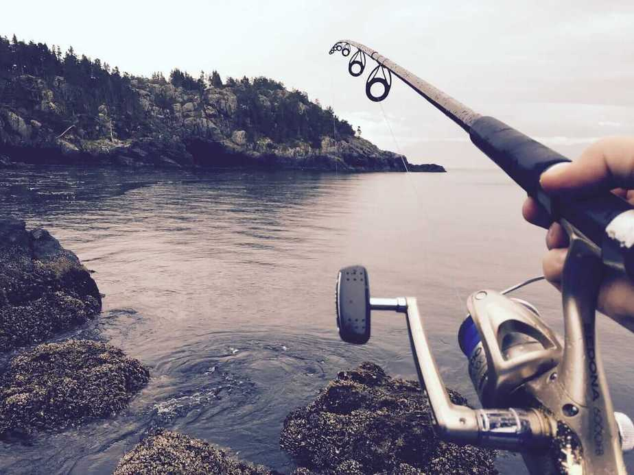 Best saltwater rod and reel combo for the money