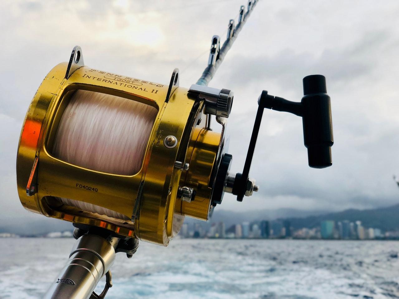 Best baitcasting rod for the money