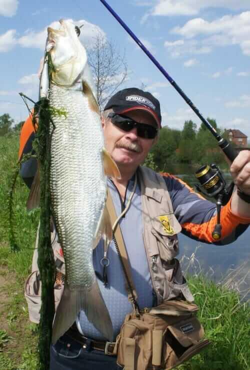 BIg fish catch