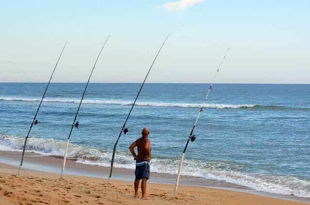BEST TIME OF THE YEAR TO GO SURF FISHING