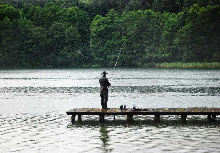 Shore Fishing for Yellow Perch