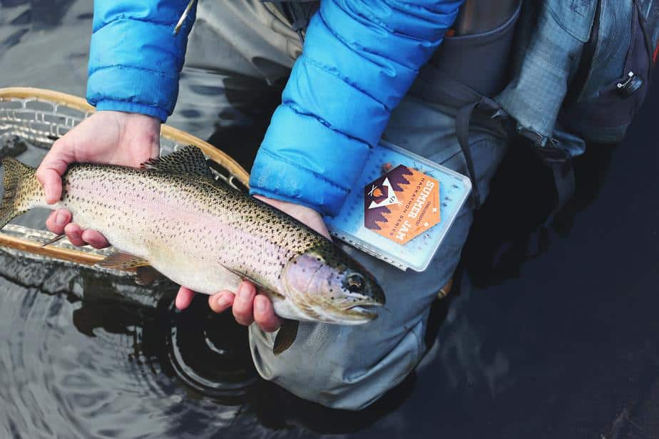 What would be the Best Trout Reel in the Upcoming Year