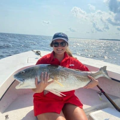 Red drum bait